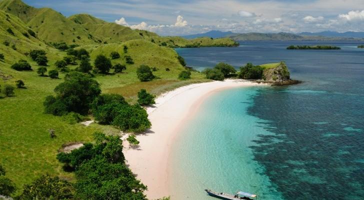 komodo-indonesia-beach