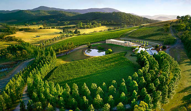 fahad-ahmed343-yarra_valley