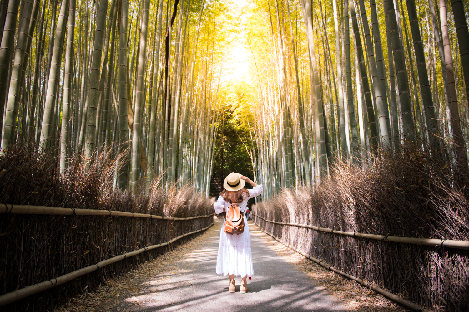 japan_kyoto_woman_arashiyama_forest