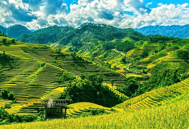 rice-terraces-164622_640