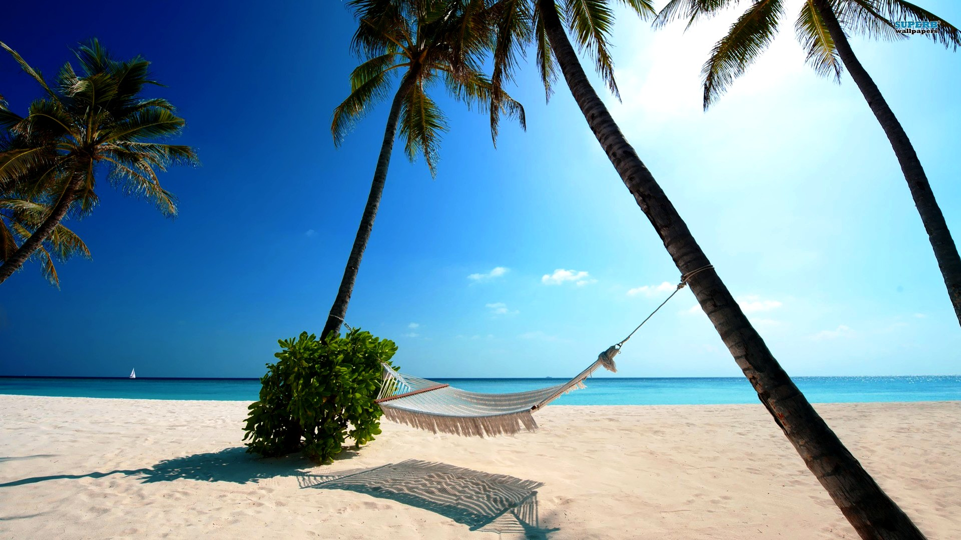 Free-Holiday-Wallpapers-for-Desktop-Summer-Beach